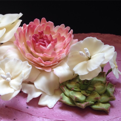 Chocolate blackbetty cake, with fondant succulents & fondant flowers