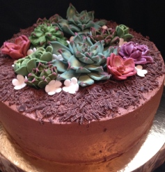 Chocolate berry cake with fondant succulent flowers.