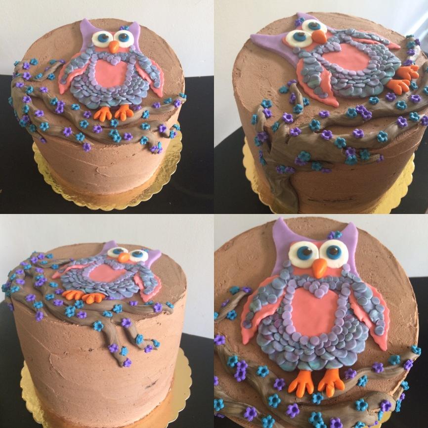 Chocolate raspberry Owl in a tree cake.