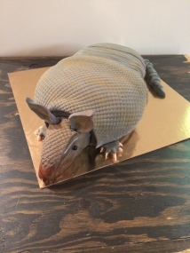 Armadillo cake, red velvet cake with cream cheese icing and homemade fondant.