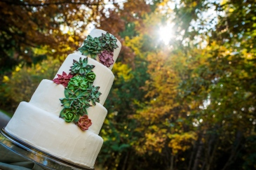 Handmade succulent wedding cake. Photo By Three Owls Studio