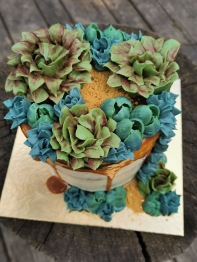 Succulent cake with buttercream succulent flowers
